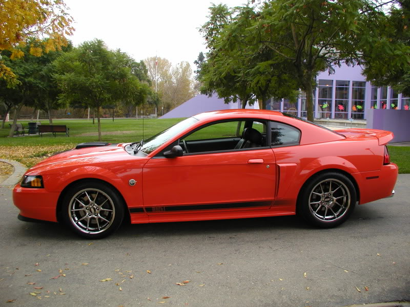 need 4 wheels reader wants to trade his 2004 mustang mach 1 for your bike rare sportbikes. Black Bedroom Furniture Sets. Home Design Ideas