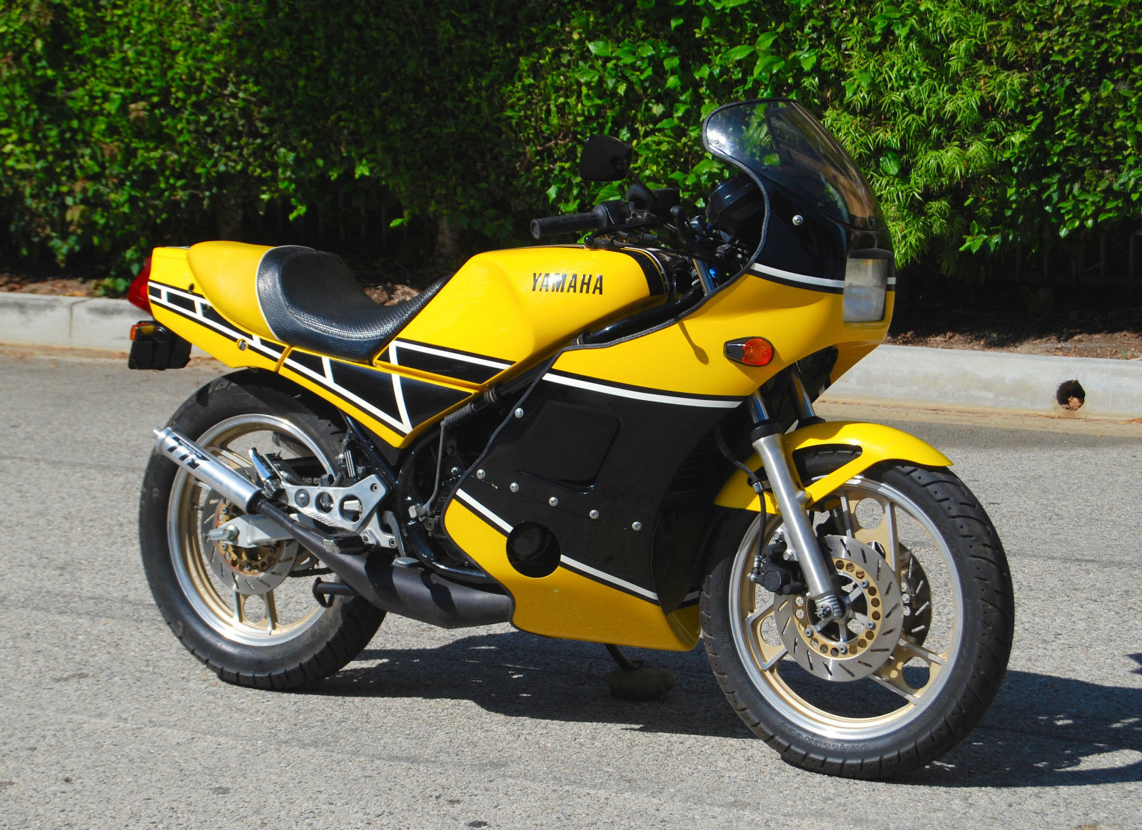 Buzzy little bee 1985 yamaha rz350 for sale rare for Yamaha rz for sale