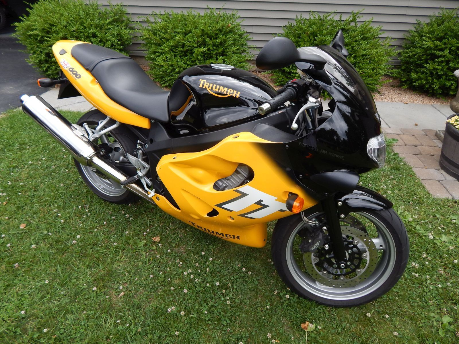 from the jaws of victory 2000 triumph tt600 rare sportbikes for sale. Black Bedroom Furniture Sets. Home Design Ideas