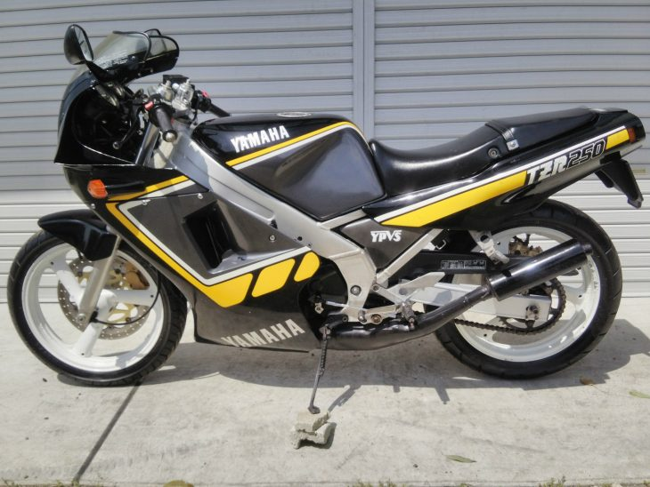 1985 Yamaha TZR250 L Side