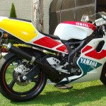 TZ250 For Sale