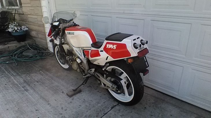 1989 Yamaha TZR250 L Side Rear