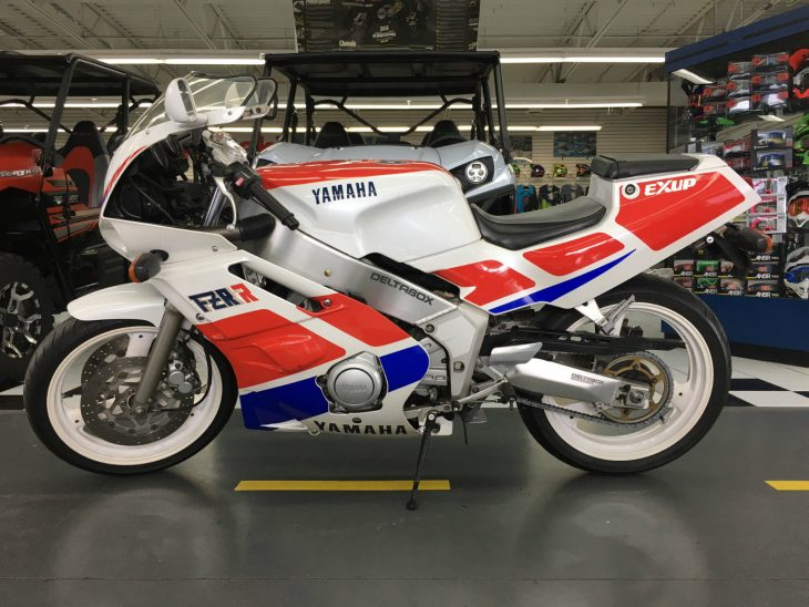 Welterweight: 1989 Yamaha FZR400R
